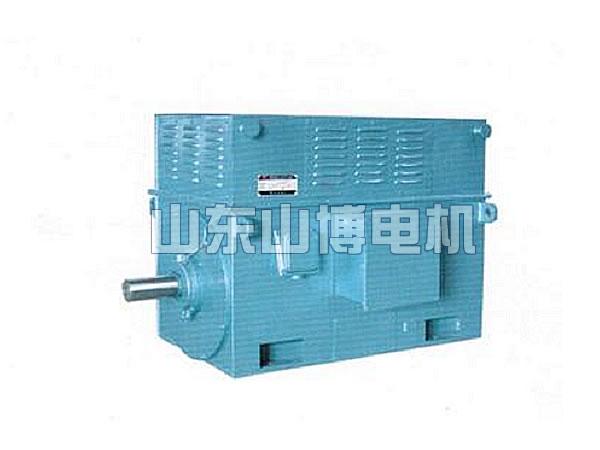 Y系列高压三相异步电动机