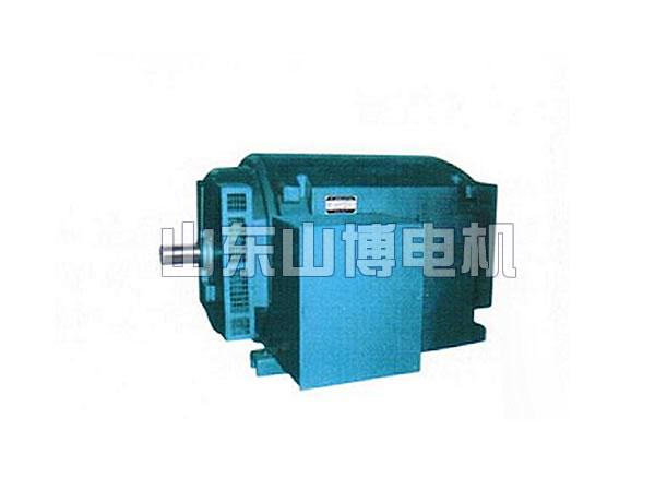 JR系列高压三相异步电动机(6KV)