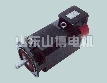 YZZ系列主轴三相异步电动机