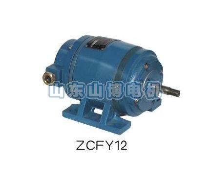 zcfy12-th直流测速电机